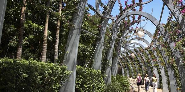 Southbank gardens