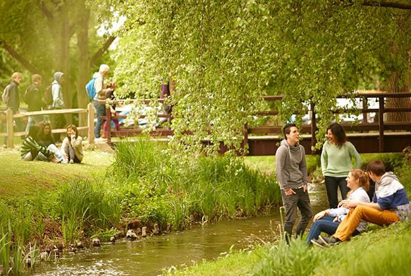 Espacio natural de nuestro campus en Chichester