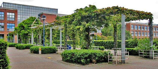 Jardines del complejo universitario