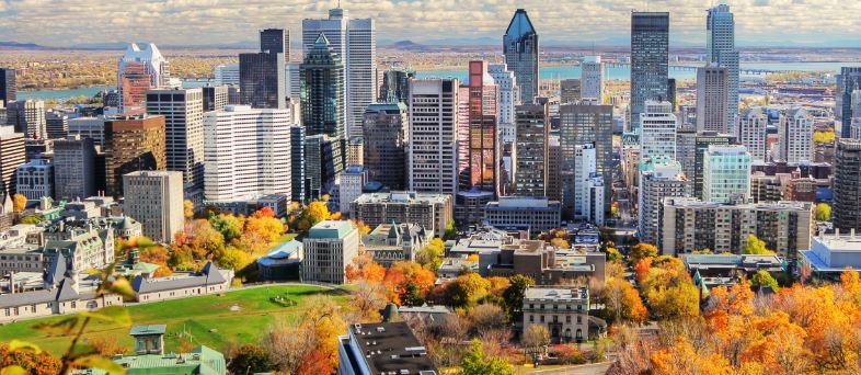 MONTREAL CITY 3