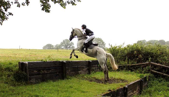 Salto de caballo de la escuela de Tipperary