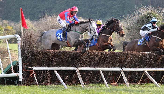 Carrera de caballos de la escuela de Tipperary