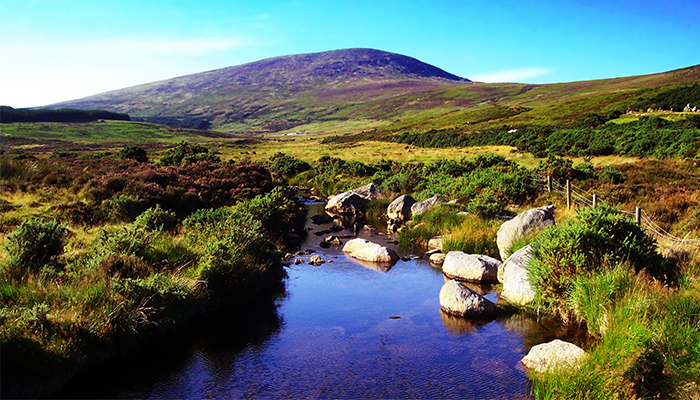 Paisaje de Wicklow